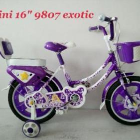 exotic16mini9807
