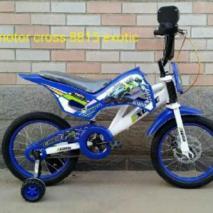 Exotic16moto8815