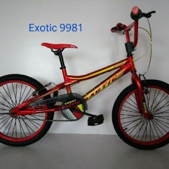 Exotic20bmx9981
