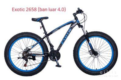 Exotic2658-ban400