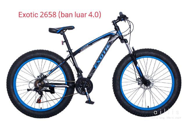 Exotic2658ban400