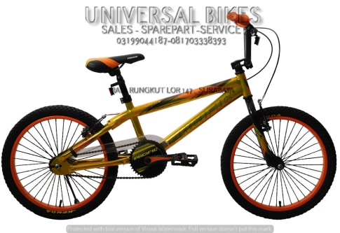 sepeda-pacific-20-bmx-spinix-glossy-a-pacific-2015-2