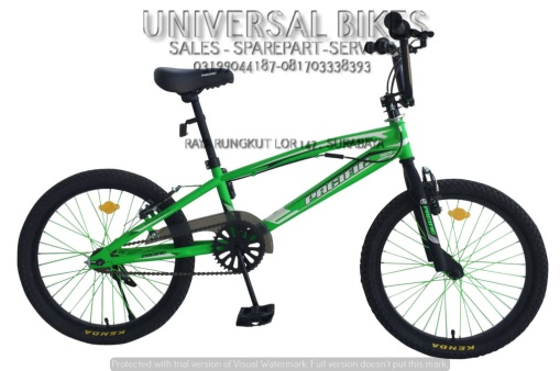 sepeda-pacific-bmx-20-2078-pacific-d