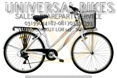 grosir sepeda mini 24 wimcycle surabaya
