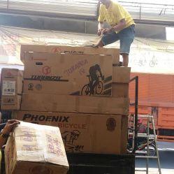 harga sepeda pasific KENDARI